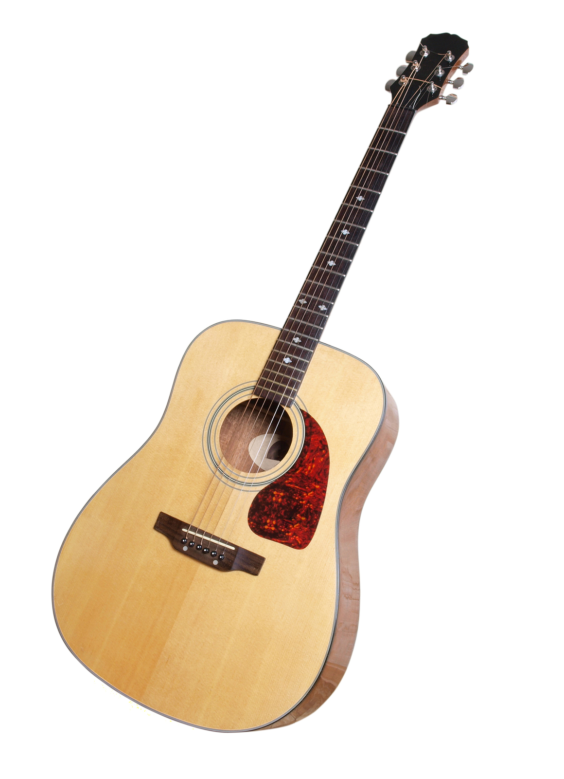 what kind of guitar should a beginner get should i rent or buy