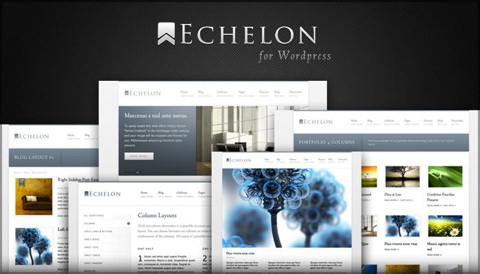 Echelon Wordpress Theme
